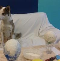 #WirBleibenZuhause: Die Hunde-Pinata