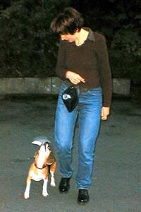 beagle-asta-fuss-gehen-04