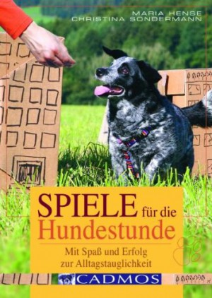 spiele f r die hundestunde das buch spass mit hund. Black Bedroom Furniture Sets. Home Design Ideas