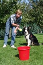 hundestunde-meggan-impulskontrolle-tennisball