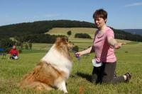 hundestunde-queenie-blickkontakt