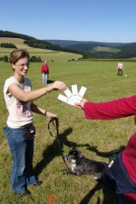hundestunde-ronja-karten-ziehen