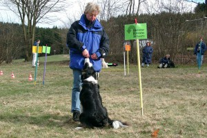rally-obedience-meggan