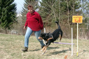 rally-obedience-zito