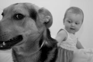 angst-hund--kind-dog-107261