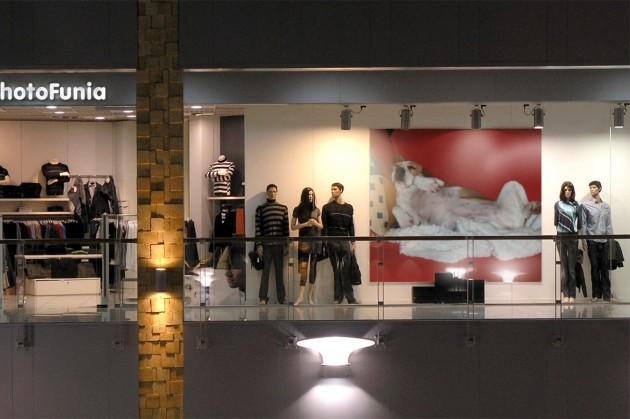 beagle-birte-photofunia-schaufenster