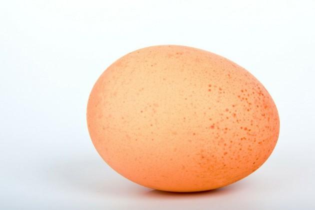 ei-egg-16868
