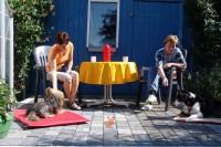 hundestunde-meggan-pina-picknick