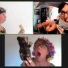 Hundverrückt: Sommernachtstraum (online)
