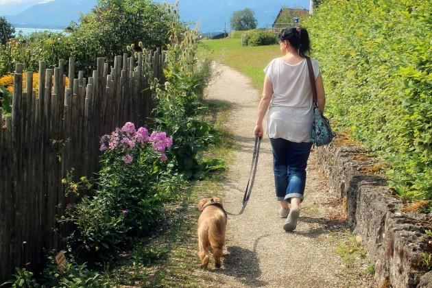 leine-hund-hinten-woman-892309