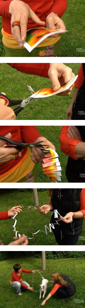 postkartensprung-serie-vertikal