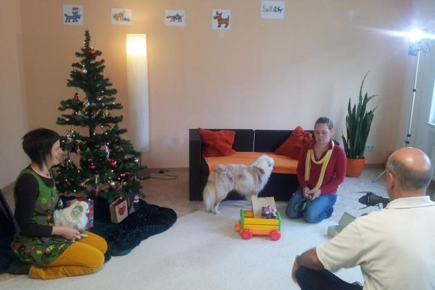 tieresucheneinzuhause-weihnachten-01