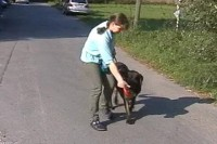 tierheim-target-training-04