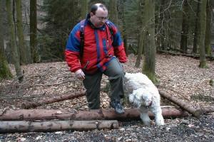 wheaten-terrier-missie-baumstamm-huerde